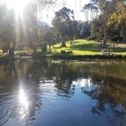 Wynberg Park Cape Town
