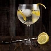 Toni Cuenca on Pexels Top 10 Gin Tasting distilleries in Cape Town