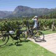 Cape Lion E-Rides - Secret Cape Town