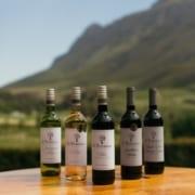 Lockdown Wine Specials in Cape Town